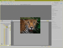 Logiciel Raw Shooter Essentials 2006