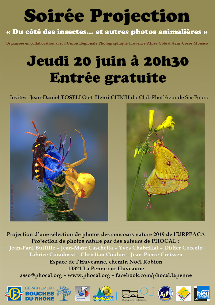 phocal-affiche-a3-projection-20-06-19-v5a-reduc