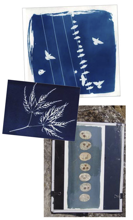 stage-cyanotype-2