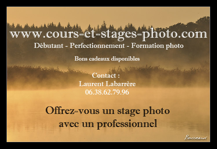 stage-photo-41