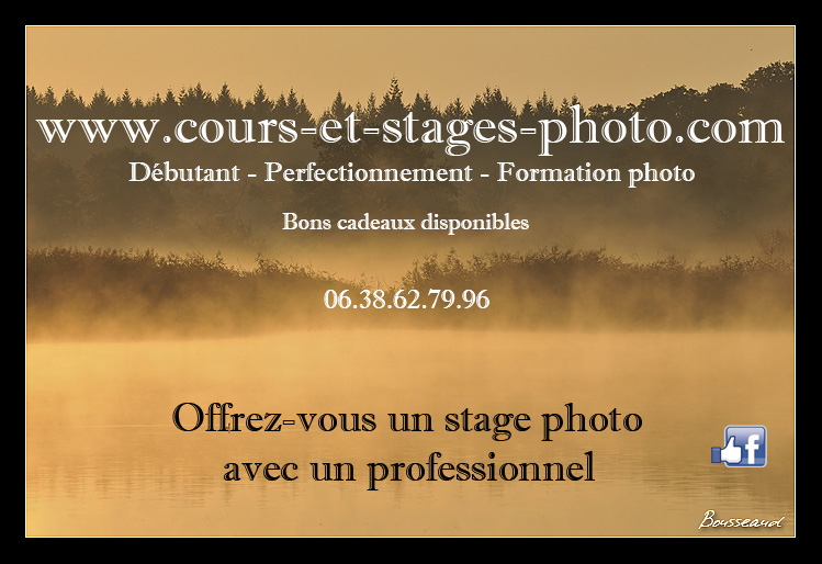 stage-photo-rouen-79