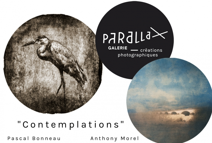 contemplation-parallax