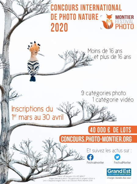 insertion-concours-2020bd